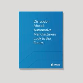 Seegrid_ebook_DisruptionAhead